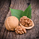 Dried walnuts with leaves Stock Images