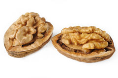 Dried walnuts Royalty Free Stock Image