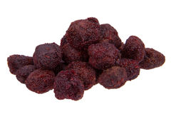 Dried waxberry Stock Images