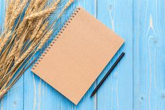 Dried wheat crop and blank of book for text or design on blue wo Royalty Free Stock Photography