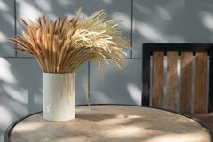 Dried wheat grass vase on wood table Stock Images
