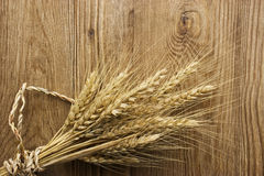 Dried Wheat Stalks on Wood Royalty Free Stock Image