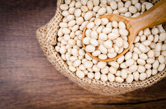 Dried White Beans. Royalty Free Stock Images