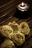 Dried white roses. Dried roses near a candle Stock Photo