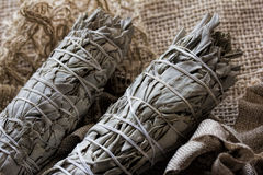 Dried White Sage Smudge Stock Images