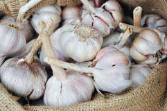 Dried whole garlic in burlap sack in asia Stock Image