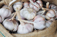 Dried whole garlic in burlap sack in asia Royalty Free Stock Photography