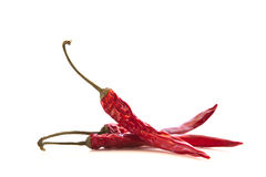Dried Whole Red Chillies Stock Image