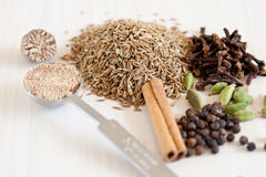 Dried whole spices Stock Image