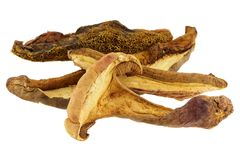 Dried Wild Bolete (Porcini) Mushrooms Stock Image
