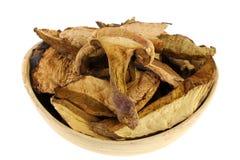 Dried Wild Bolete (Porcini) Mushrooms Stock Images