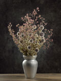 Dried wild flowers bouquet Royalty Free Stock Photography