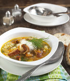 Dried Wild Mushroom and potato soup. Stock Photography