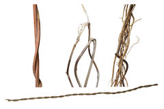 Dried wild vines set isolated on white background, clipping path Royalty Free Stock Photo