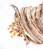 Dried Winged Bean seed and bean pod on white dish Royalty Free Stock Images