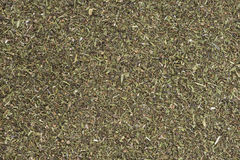 Dried Winter Savory (background image) Royalty Free Stock Photography