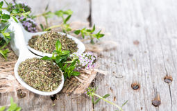 Dried Winter Savory Royalty Free Stock Images