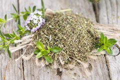 Dried Winter Savory Stock Photography