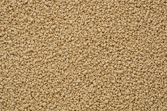 Dried Yeast (Saccharomyces cerevisiae) Royalty Free Stock Photography