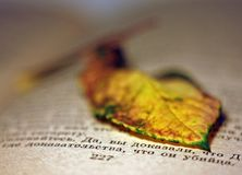 A dried yellow leaf lying on an old vintage book stock photo