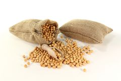 Dried yellow peas Stock Photography