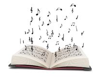 Driedimensionele vliegende muzikale elementen royalty-vrije illustratie