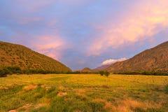 Driefontein solnedgång arkivbild