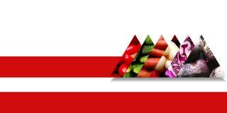 Driehoeken met groenten worden gevuld en verbindend door een rood lint dat Royalty-vrije Stock Afbeeldingen