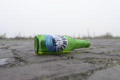 Empty beer bottle. DRIEL, NETHERLANDS - NOVEMBER 26, 2016: Empty beer bottle. Brouwers Pilsener is a Dutch pils beer that has been brought to market by Albert stock photo