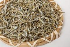 Driend-Sardellenmeeresfrüchte lizenzfreie stockfotos