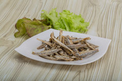 Dries anchovy Royalty Free Stock Photo