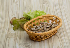 Dries anchovy Stock Photo