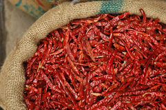 Dries Chillies. Dried Chilies at market in Delhi Royalty Free Stock Images