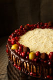Drievoudige die chocoladecake met granaatappel, Amerikaanse veenbessen en kleine appelen wordt verfraaid Royalty-vrije Stock Foto's