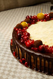 Drievoudige die chocoladecake met granaatappel, Amerikaanse veenbessen en kleine appelen wordt verfraaid Royalty-vrije Stock Afbeelding