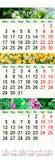 Drievoudige kalender voor April May en Juni 2017 met beelden Royalty-vrije Stock Afbeelding
