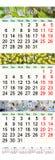 Drievoudige kalender voor Maart April en Mei 2017 met beelden Royalty-vrije Stock Afbeelding