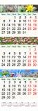 Drievoudige kalender voor Maart April en Mei 2017 met beelden Stock Foto