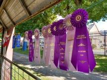 Drievoudige Wimpel Rosette Ribbons Awarded bij een Markt van de Provincie Royalty-vrije Stock Foto