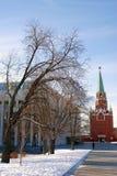 Drievuldigheidstoren van Moskou het Kremlin De Plaats van de Erfenis van de Wereld van Unesco Stock Fotografie