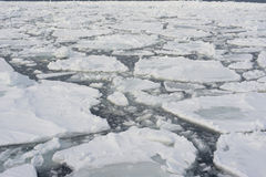 Drift ice in Abashini, Japan Royalty Free Stock Images