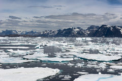 Drift Ice, Coastline, Greenland Royalty Free Stock Photos