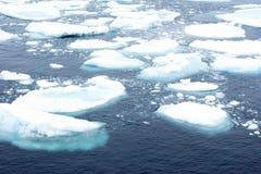 Drift Ice Royalty Free Stock Photo