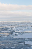 Drift ice Stock Photos