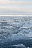 Drift ice, Sea of Okhotsk Stock Photo