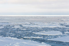 Drift ice, Sea of Okhotsk Stock Image