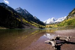 Drift Wood At Maroon Bells Royalty Free Stock Photography
