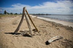 Drift wood on the beach. Royalty Free Stock Photography