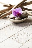 Drift wood on beige stones for soft spa decor Royalty Free Stock Photos