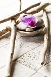 Drift wood and mineral design for soft spa decor Royalty Free Stock Photos